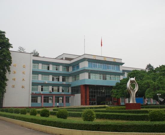 303医院191部队综合防雷工程 2008年  (1)