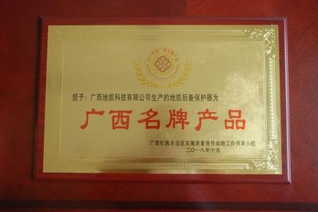 13-广西名牌产品