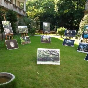 岭南园林摄影比赛