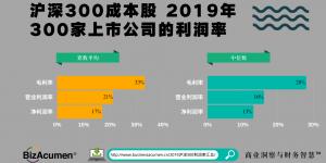 沪深300-2019利润率