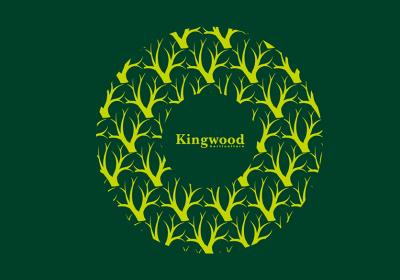 king222-05