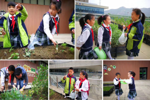 2.学生活动-老师拍摄