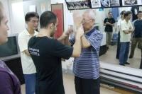 正念咏春拳在线课程-完整传承叶问师父
