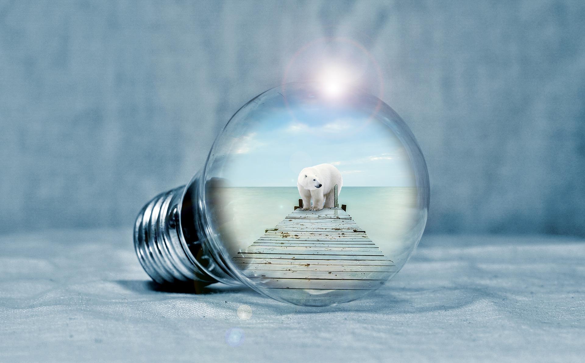 light-bulb-2581192_1920